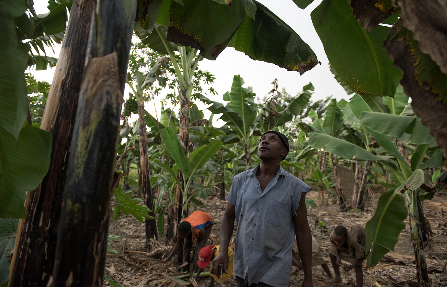 Uganda Africa reportage photography