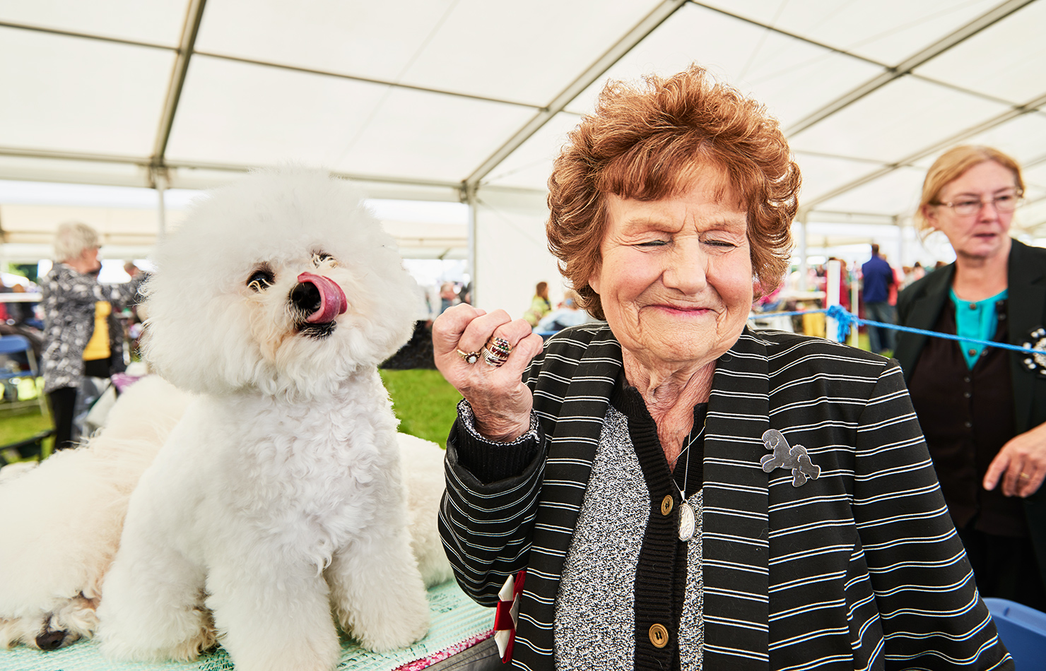 UK windsor dogshow documentary advertising photography